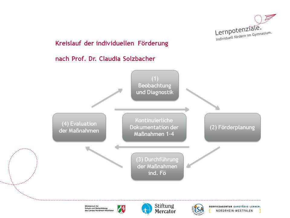 Kreislauf der individuellen Förderung nach Prof. Dr. Claudia Solzbacher