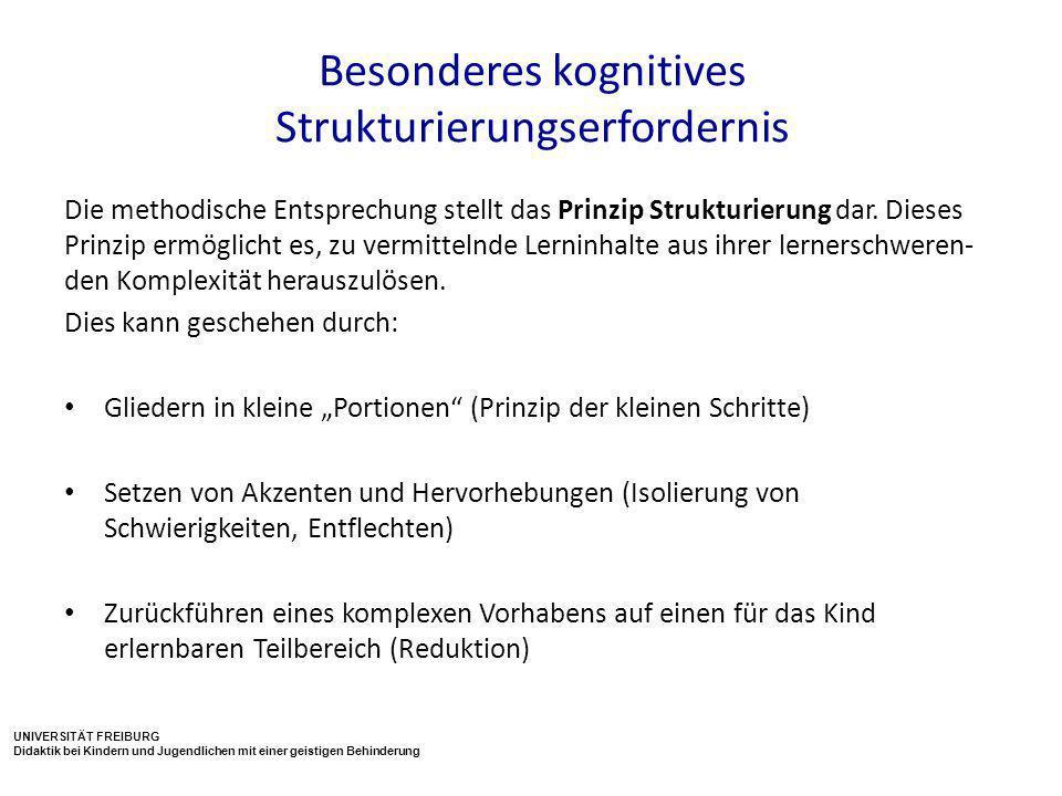 Besonderes kognitives Strukturierungserfordernis