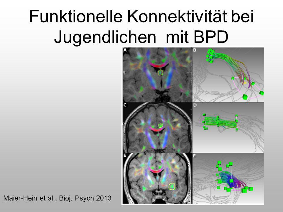 Funktionelle Konnektivität bei Jugendlichen mit BPD