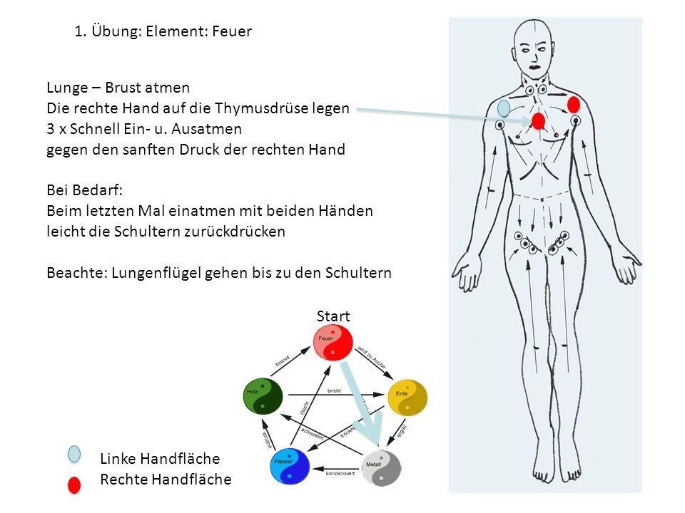 1. Übung: Element: Feuer Lunge – Brust atmen. Die rechte Hand auf die Thymusdrüse legen. 3 x Schnell Ein- u. Ausatmen.