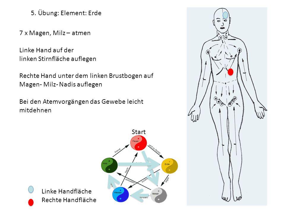 5. Übung: Element: Erde 7 x Magen, Milz – atmen. Linke Hand auf der. linken Stirnfläche auflegen.