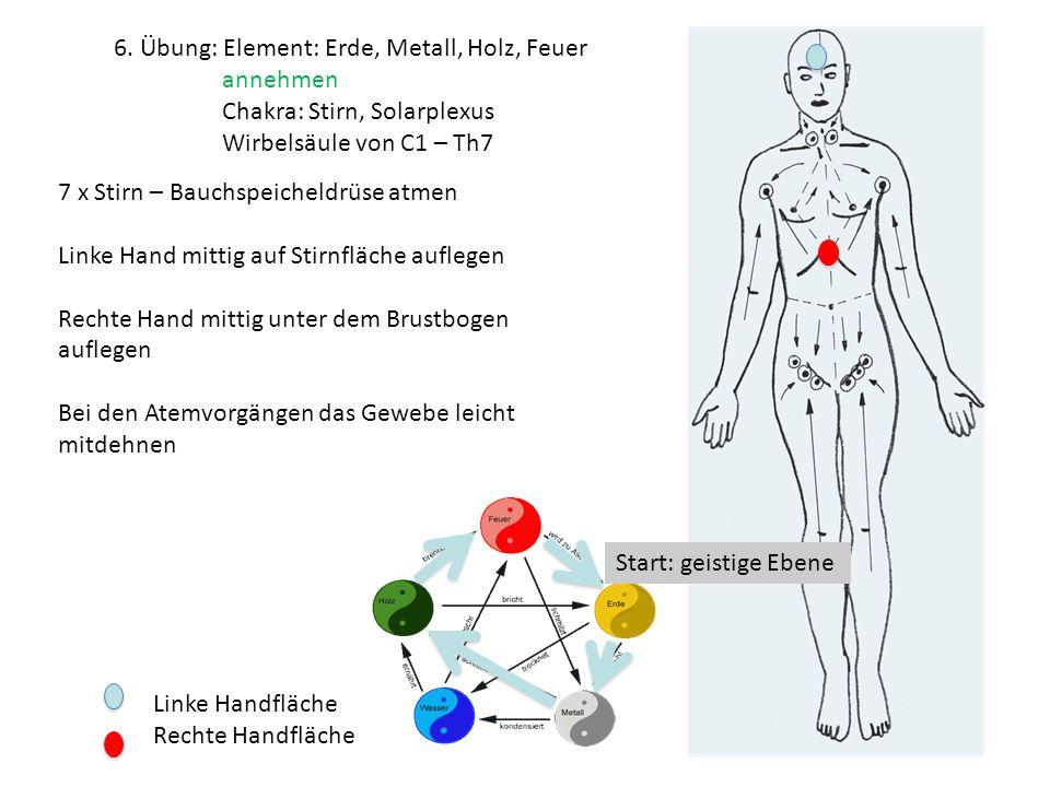 Schön Makroskopische Anatomie Der Menschliche Herz übung 30 ...
