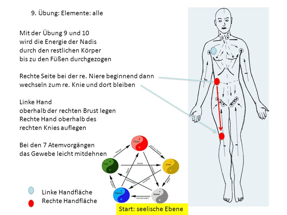 9. Übung: Elemente: alle Mit der Übung 9 und 10. wird die Energie der Nadis. durch den restlichen Körper.