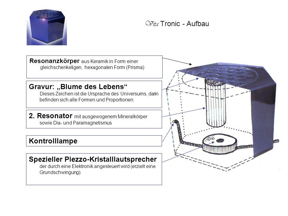 Vita Tronic - Aufbau Resonanzkörper aus Keramik in Form einer gleichschenkeligen, hexagonalen Form (Prisma)