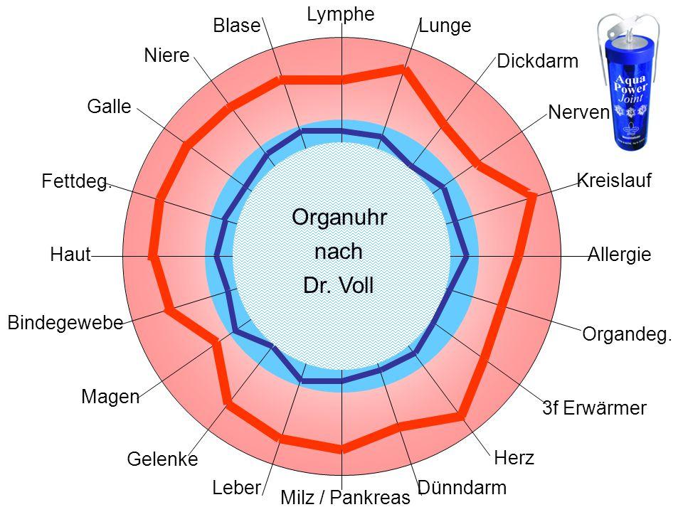 Organuhr nach Dr. Voll Lymphe Blase Lunge Niere Dickdarm Galle Nerven