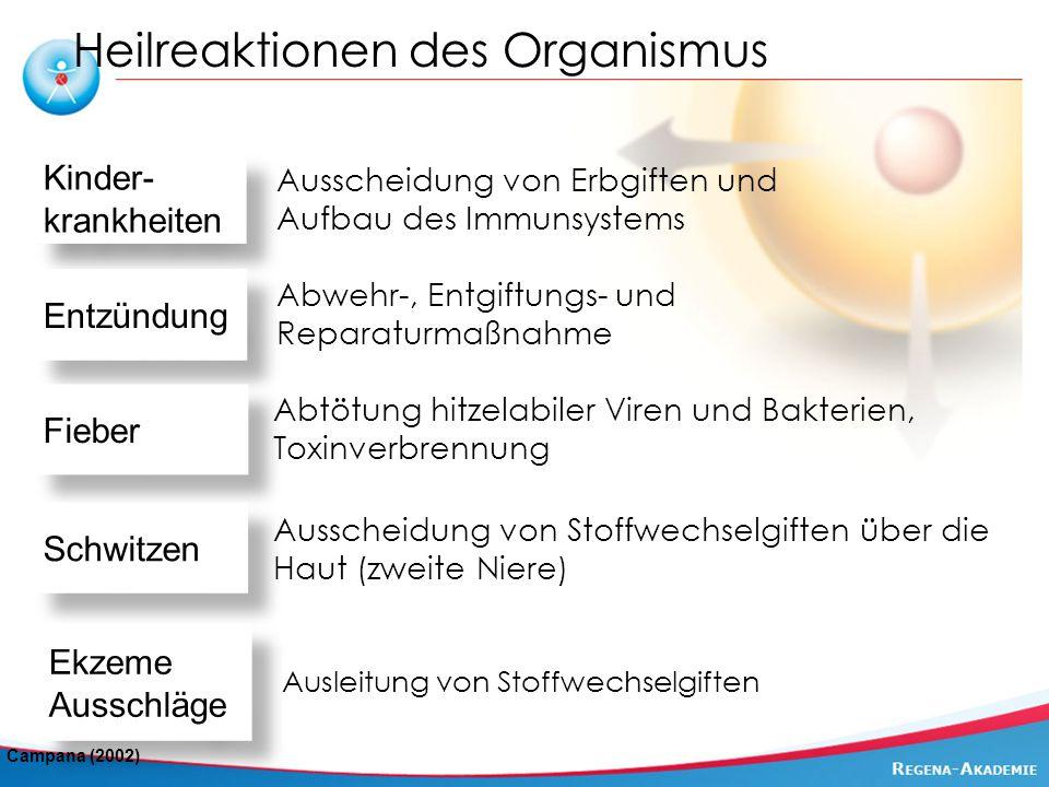 Heilreaktionen des Organismus