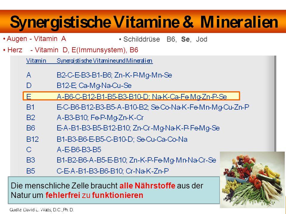 Augen - Vitamin A Schilddrüse B6, Se, Jod. Herz - Vitamin D, E(Immunsystem), B6.