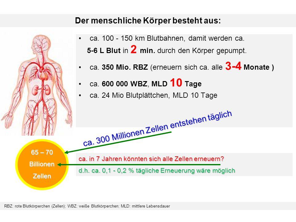 Der menschliche Körper besteht aus: