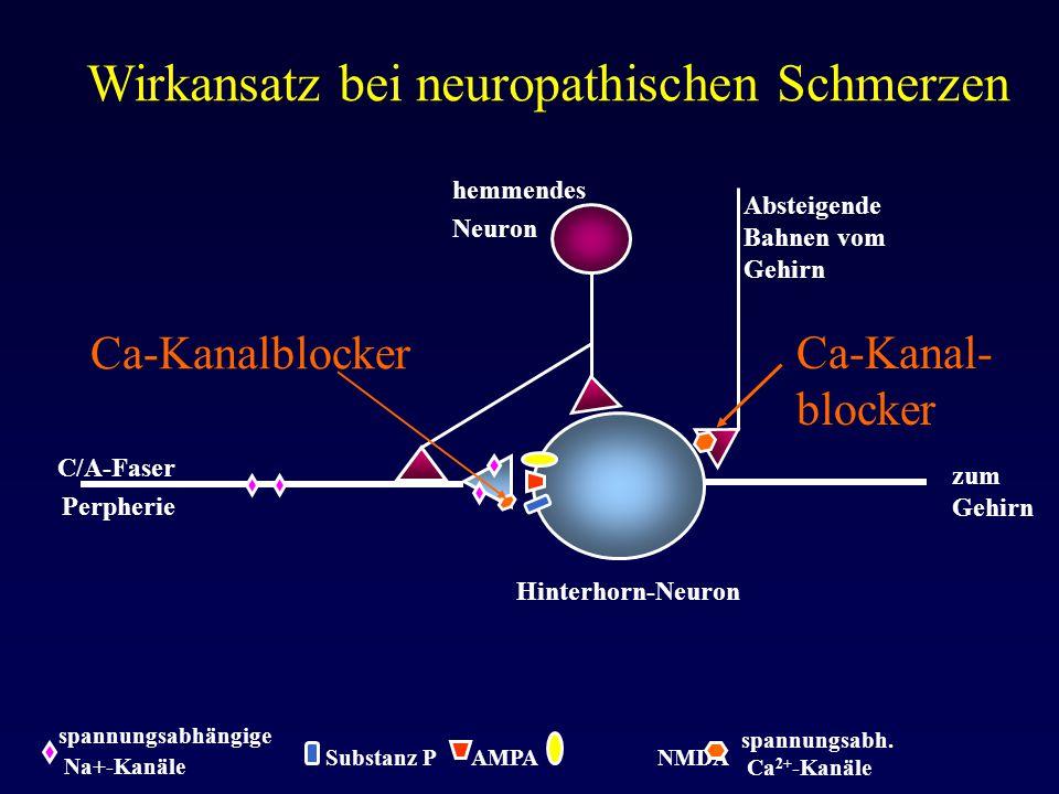 Wirkansatz bei neuropathischen Schmerzen