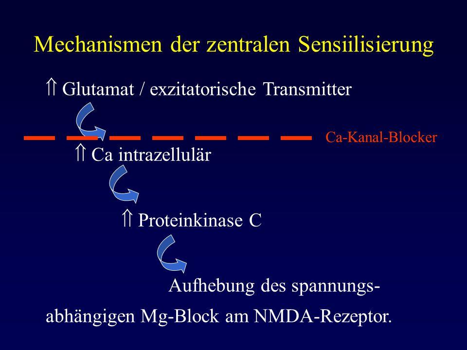 Mechanismen der zentralen Sensiilisierung