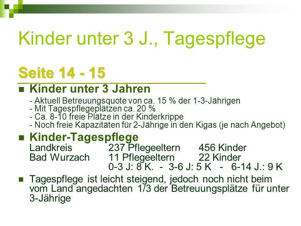 Kinder unter 3 J., Tagespflege