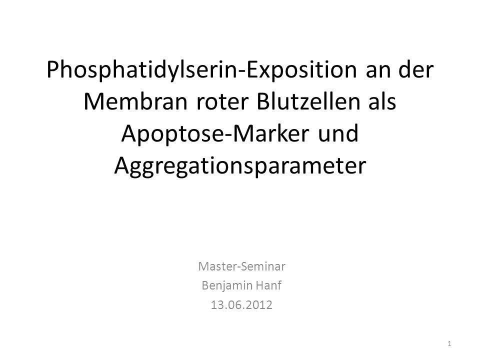 Master-Seminar Benjamin Hanf 13.06.2012
