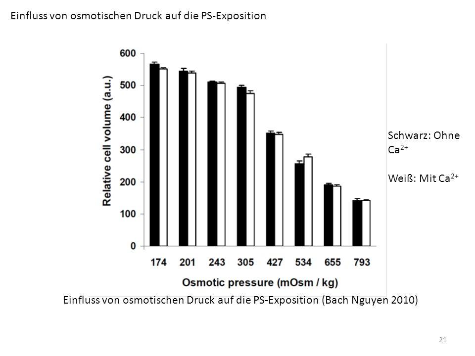 Einfluss von osmotischen Druck auf die PS-Exposition