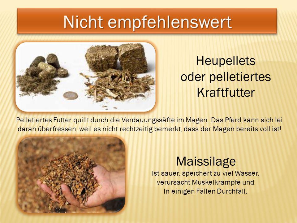 Nicht empfehlenswert Heupellets oder pelletiertes Kraftfutter
