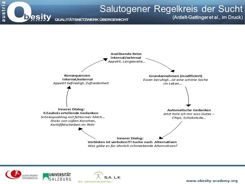 Salutogener Regelkreis der Sucht W