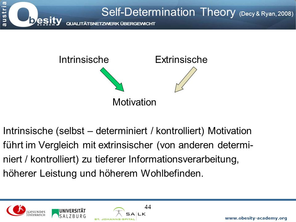 Self-Determination Theory (Decy & Ryan, 2008)