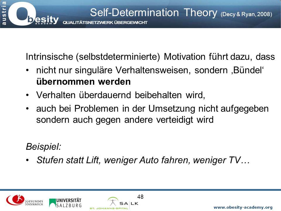 Self-Determination Theory (Decy & Ryan, 2008)