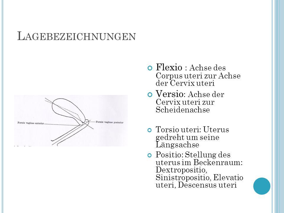 Lagebezeichnungen Flexio : Achse des Corpus uteri zur Achse der Cervix uteri. Versio: Achse der Cervix uteri zur Scheidenachse.