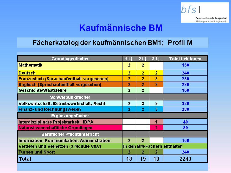 Fächerkatalog der kaufmännischen BM1; Profil M
