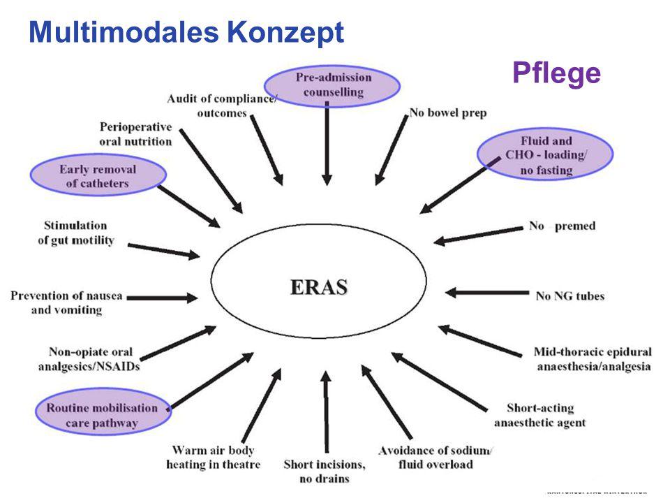 Multimodales Konzept Pflege