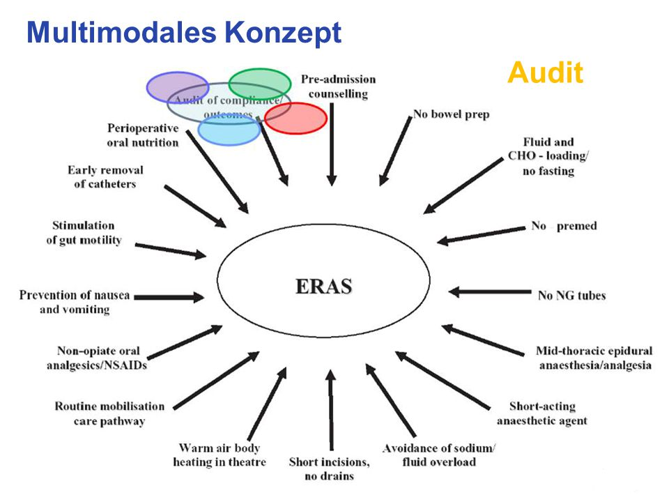 Multimodales Konzept Audit