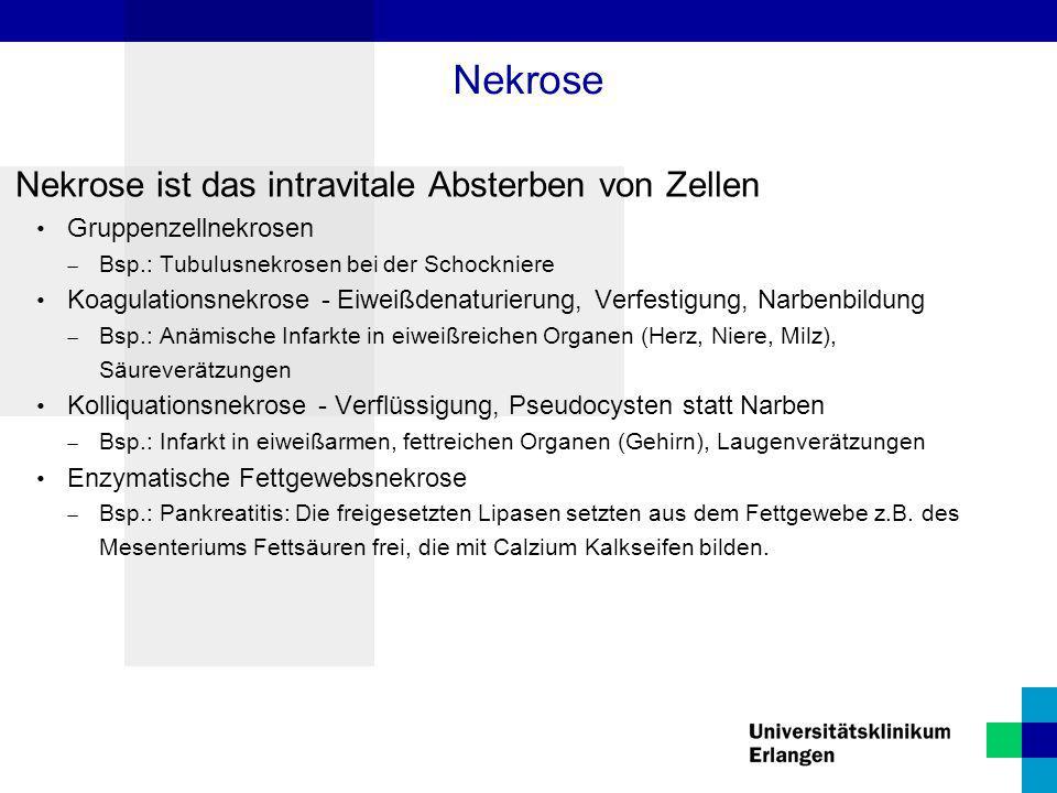Nekrose Nekrose ist das intravitale Absterben von Zellen