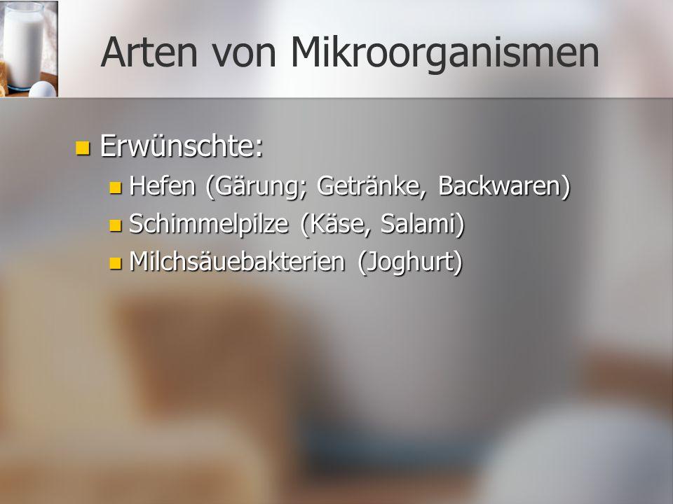 Arten von Mikroorganismen