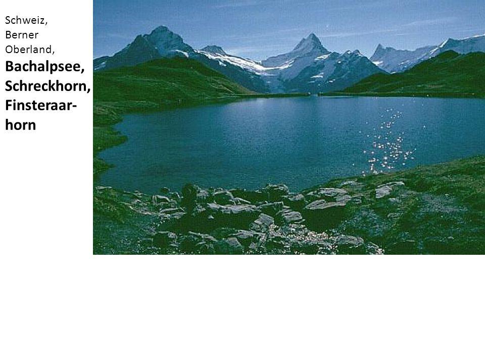 Schweiz, Berner Oberland, Bachalpsee, Schreckhorn, Finsteraar-horn