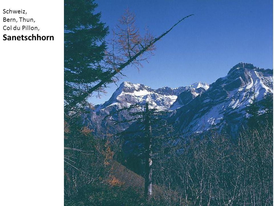 Schweiz, Bern, Thun, Col du Pillon, Sanetschhorn