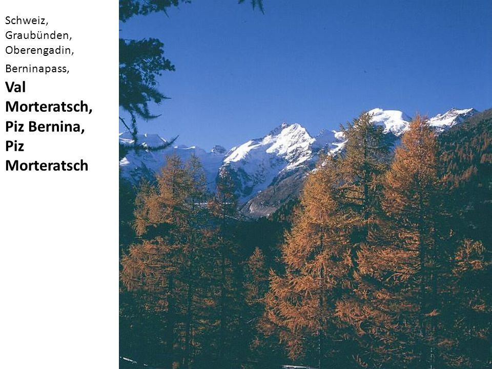 Val Morteratsch, Piz Bernina, Piz Morteratsch Schweiz, Graubünden,
