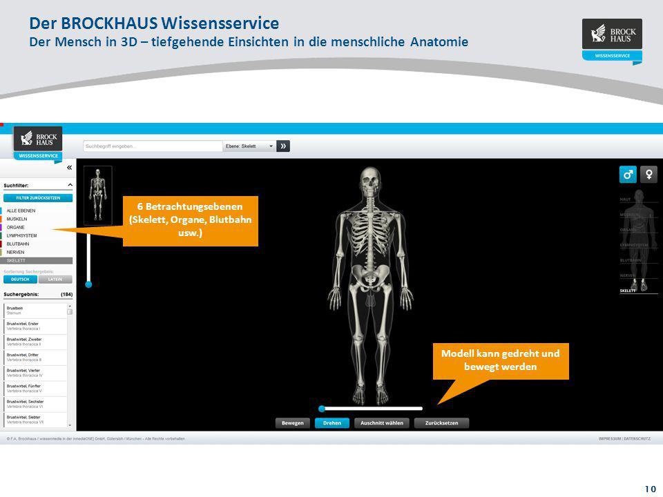 Atemberaubend Menschliche Anatomie Enzyklopädie Bilder - Menschliche ...