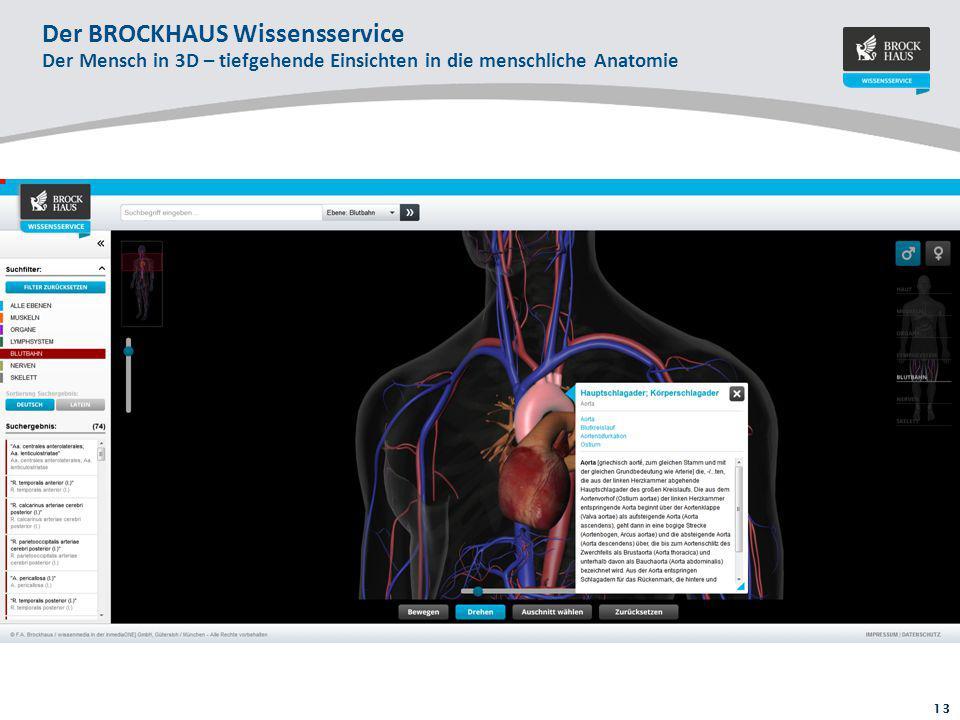 Fein Menschliche Anatomie Einer Tabelle Pdf Ideen - Menschliche ...