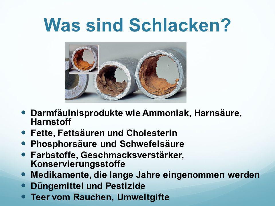Was sind Schlacken Darmfäulnisprodukte wie Ammoniak, Harnsäure, Harnstoff. Fette, Fettsäuren und Cholesterin.