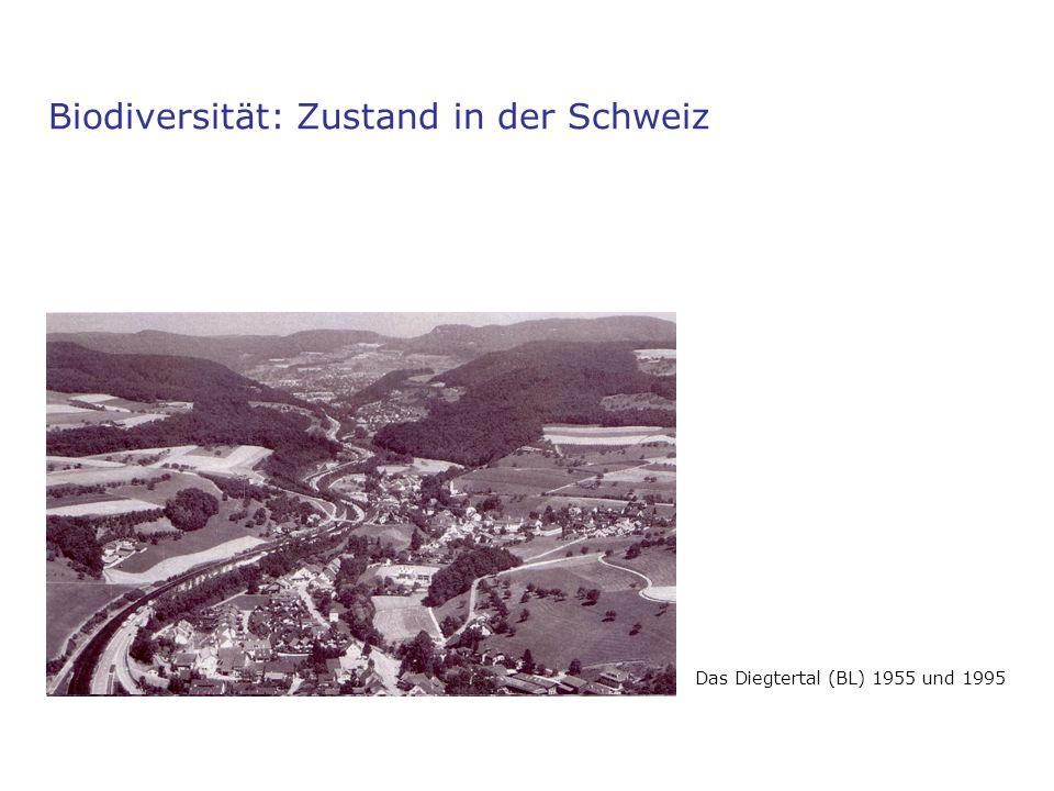 Biodiversität: Zustand in der Schweiz