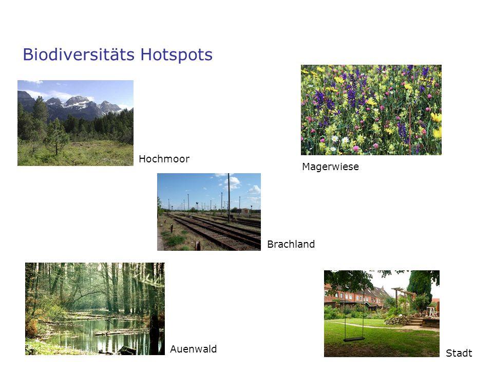 Biodiversitäts Hotspots