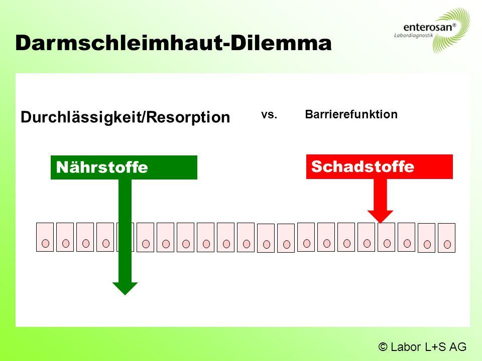 Darmschleimhaut-Dilemma