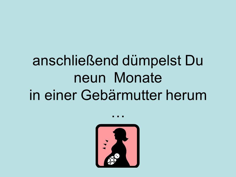anschließend dümpelst Du neun Monate in einer Gebärmutter herum …