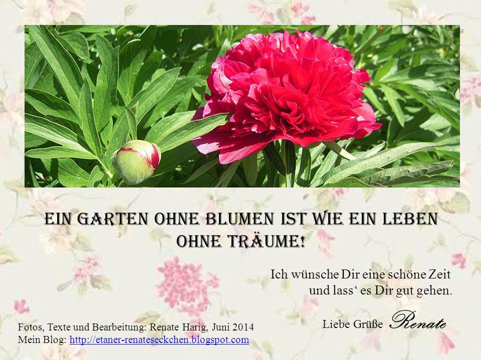 Ein Garten ohne Blumen ist wie ein Leben ohne Träume!