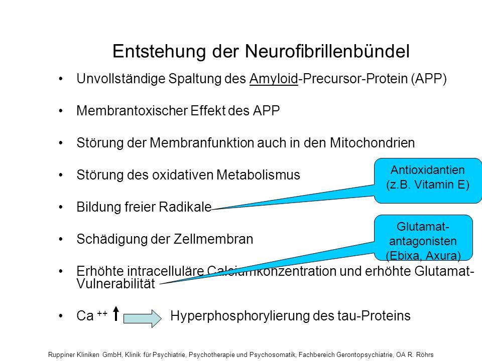 Entstehung der Neurofibrillenbündel