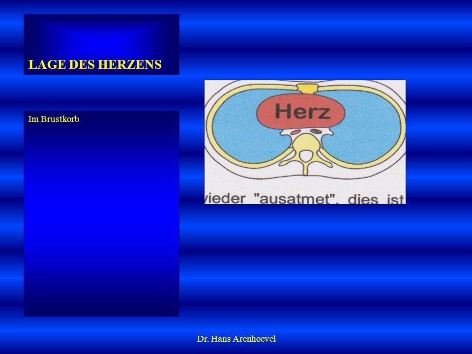 LAGE DES HERZENS Im Brustkorb Dr. Hans Arenhoevel