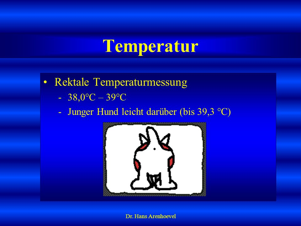 Temperatur Rektale Temperaturmessung 38,0°C – 39°C