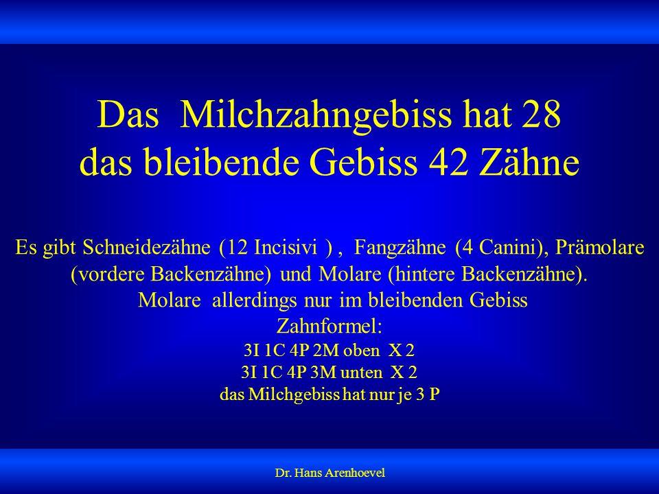 Das Milchzahngebiss hat 28 das bleibende Gebiss 42 Zähne Es gibt Schneidezähne (12 Incisivi ) , Fangzähne (4 Canini), Prämolare (vordere Backenzähne) und Molare (hintere Backenzähne). Molare allerdings nur im bleibenden Gebiss Zahnformel: 3I 1C 4P 2M oben X 2 3I 1C 4P 3M unten X 2 das Milchgebiss hat nur je 3 P