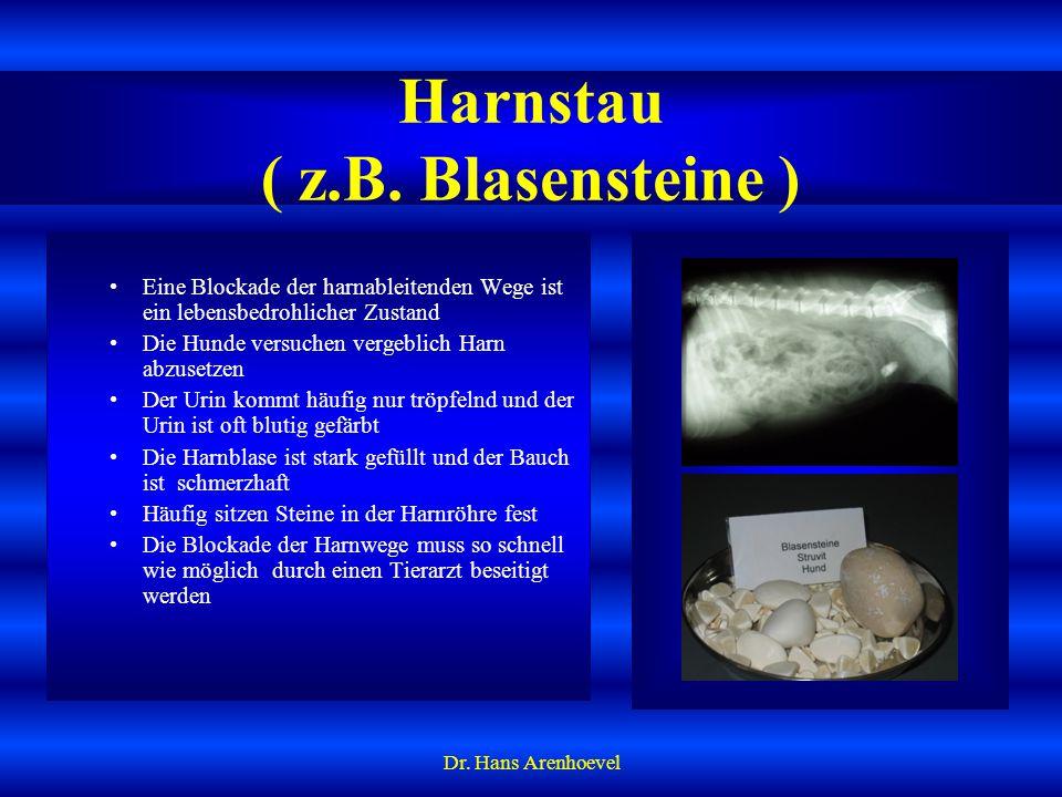 Harnstau ( z.B. Blasensteine )