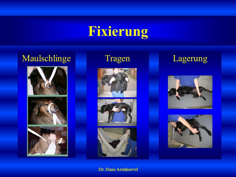 Fixierung Maulschlinge Tragen Lagerung Dr. Hans Arenhoevel