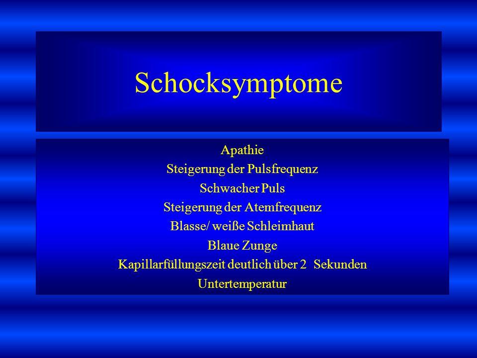 Schocksymptome Apathie Steigerung der Pulsfrequenz Schwacher Puls