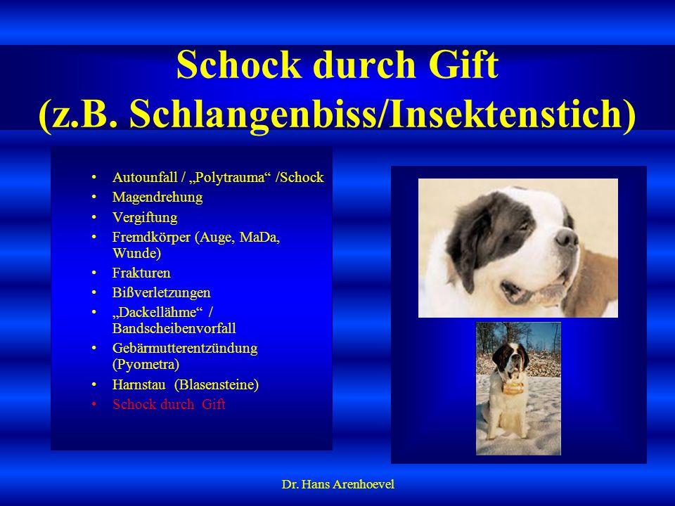 Schock durch Gift (z.B. Schlangenbiss/Insektenstich)