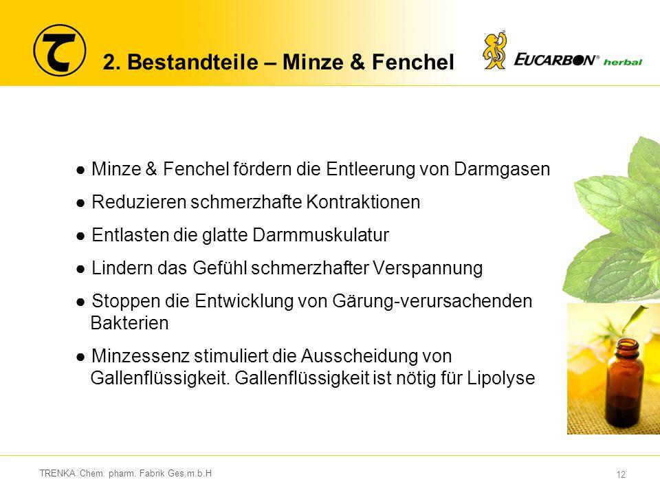 2. Bestandteile – Minze & Fenchel