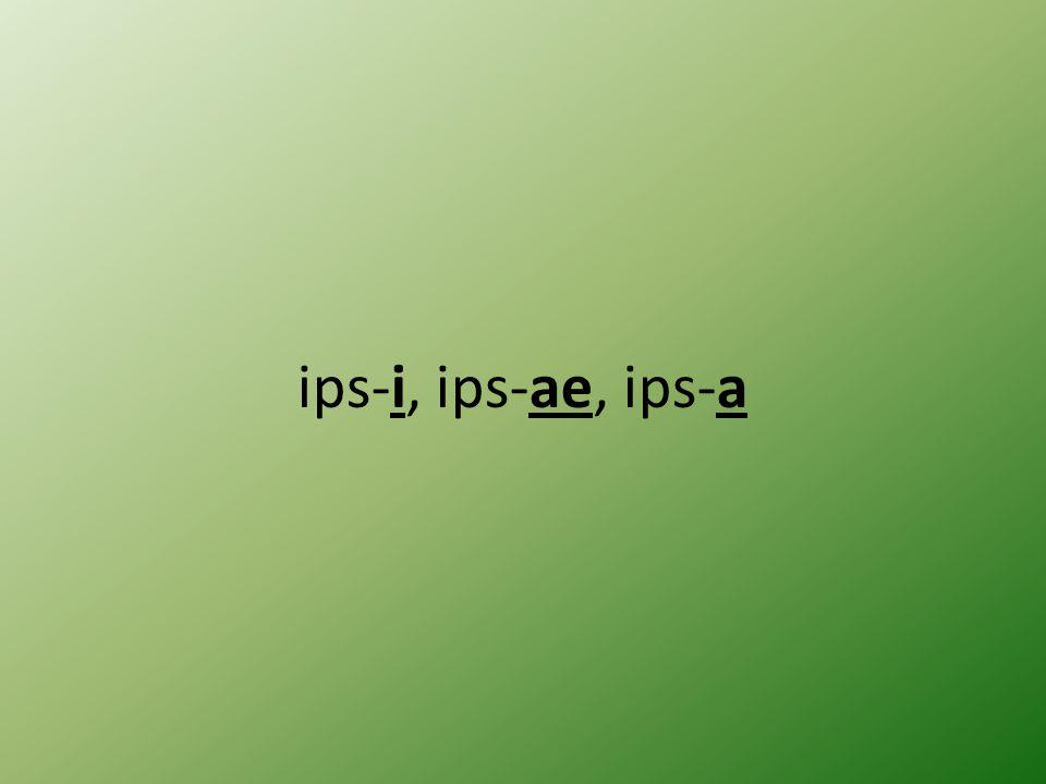 ips-i, ips-ae, ips-a