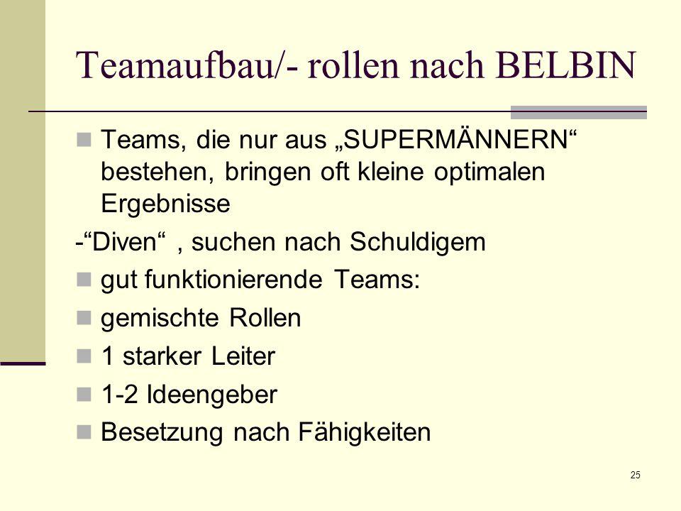 Teamaufbau/- rollen nach BELBIN
