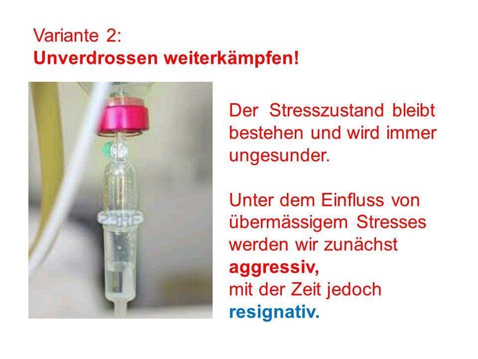 Variante 2: Unverdrossen weiterkämpfen! Der Stresszustand bleibt bestehen und wird immer ungesunder.